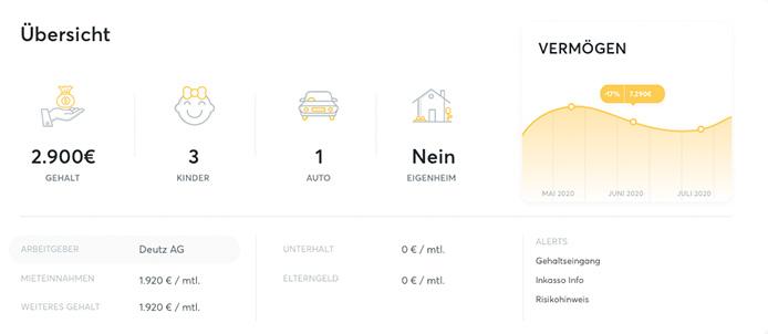 fino.insights Overlay Profile Details